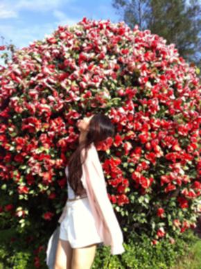 Webe_Chen